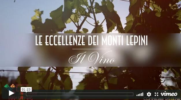 Monti Lepini – Il Vino
