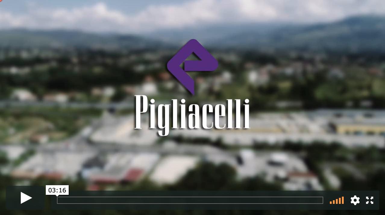 Pigliacelli Corporate