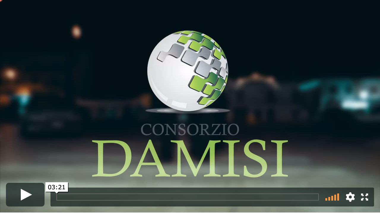 Spot Damisi