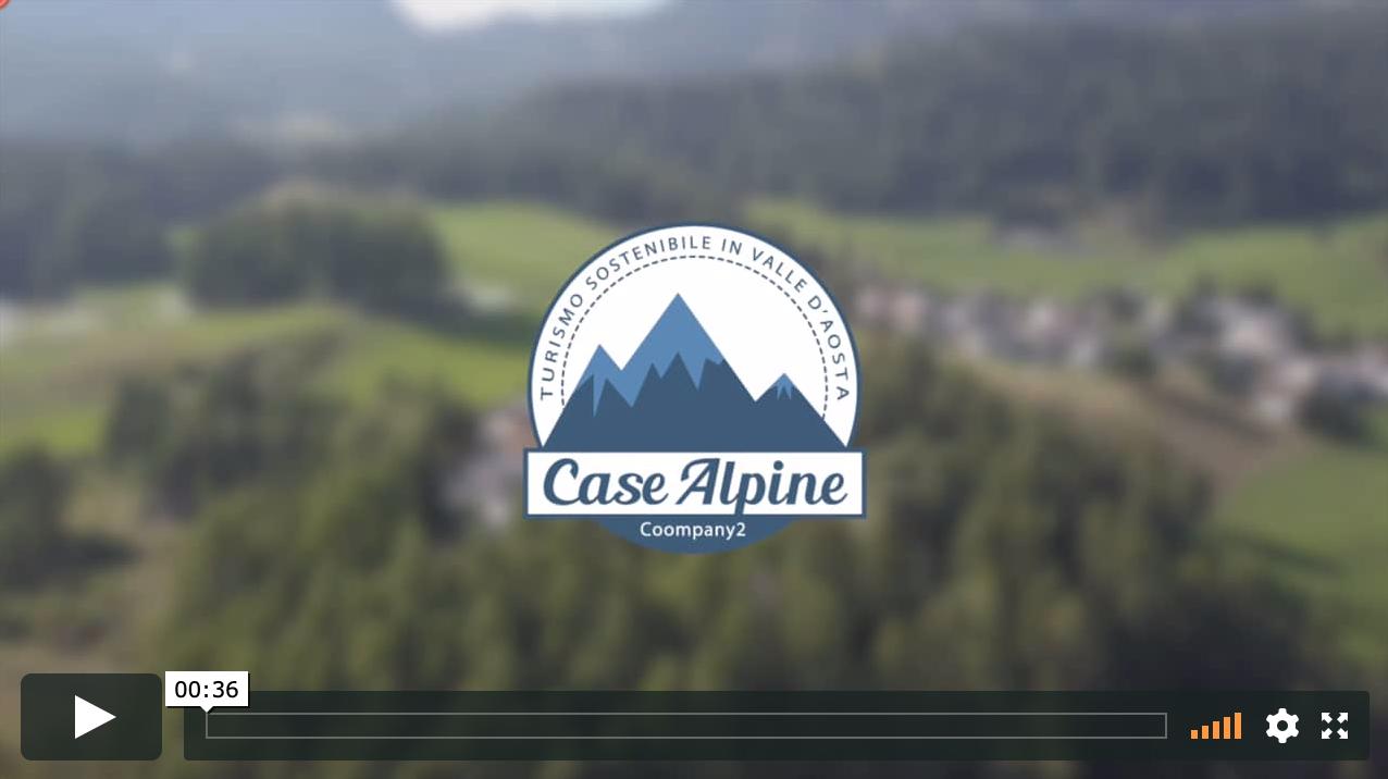 Spot Case Alpine